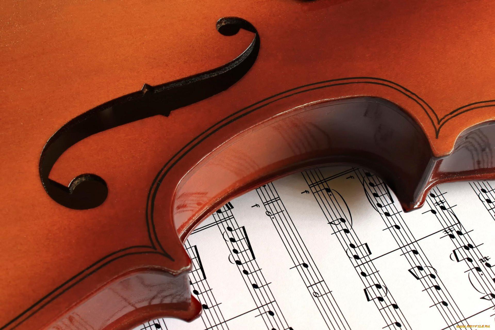 Картинка скрипка ноты